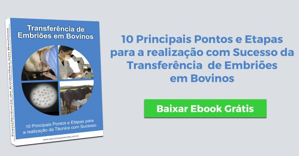 Ebook Transferência de Embriões em Bovinos