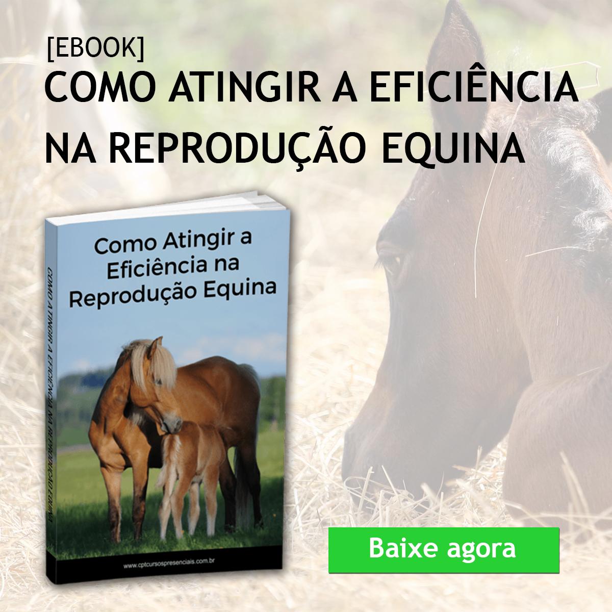 Ebook de Reprodução Equina