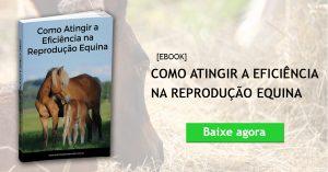 Ebook Reprodução Equina