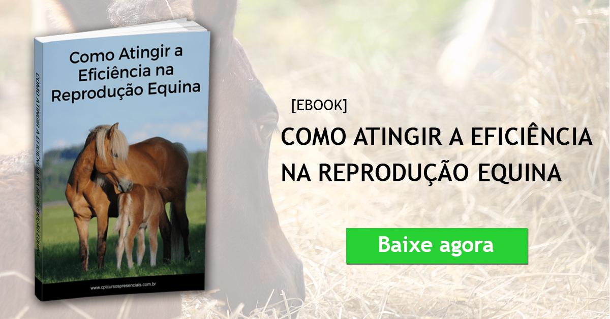Ebook Como Atingir a Eficiência na Reprodução Equina