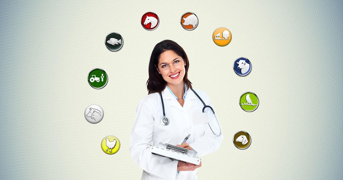Áreas de atuação na Medicina Veterinária