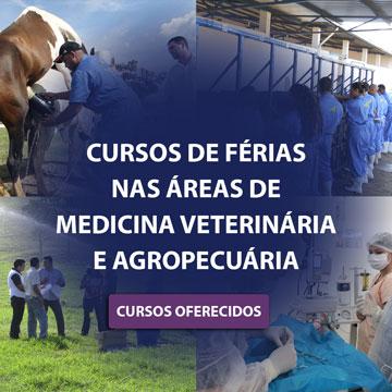 Cursos de Férias nas áreas de Medicina Veterinária e Agropecuária