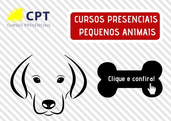 CURSOS PRESENCIAIS EM PEQUENOS ANIMAIS