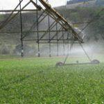 Projetos de irrigação bem aplicados acompanham dados de qualidade. Não perca tempo e confira os principais pontos para o sucesso.