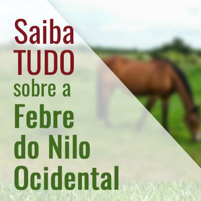 Febre do Nilo Ocidental: Alerta para criadores de equinos e tudo que você precisa saber