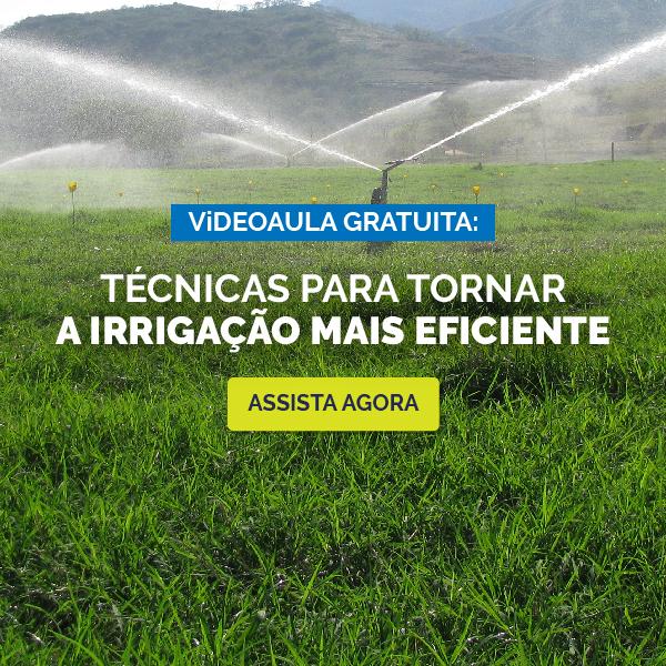 Videoaula irrigação eficiente