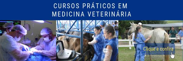 Cursos práticos em medicina veterinária