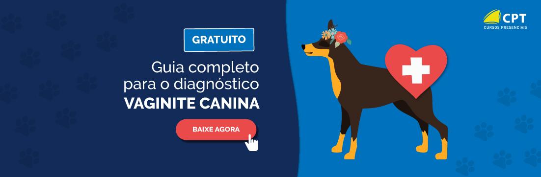 Vaginite Canina: Manual completo para o diagnóstico