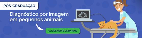 Pós-Graduação em Diagnóstico por Imagem em Pequenos Animais