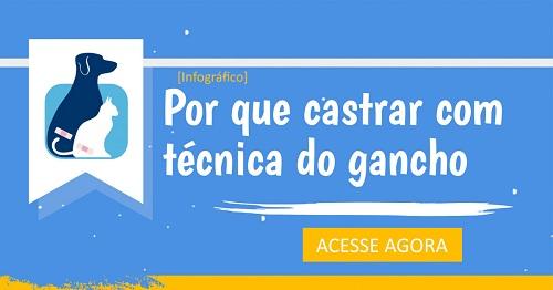 Material Gratuito: Infográfico - Castração com Técnica do Gancho