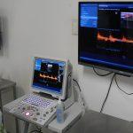 ecodopplercardiograma veterinário