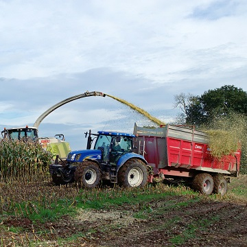 How to produce silage