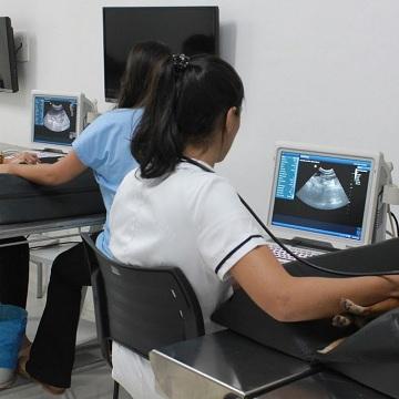 especialização em ultrassonografia de pequenos animais