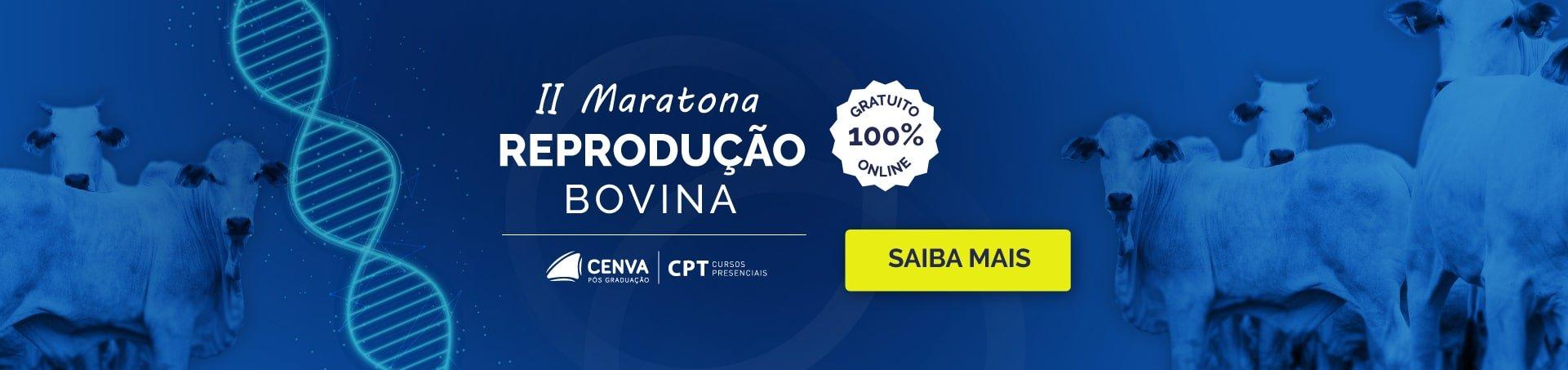 II Maratona da Reprodução Bovina