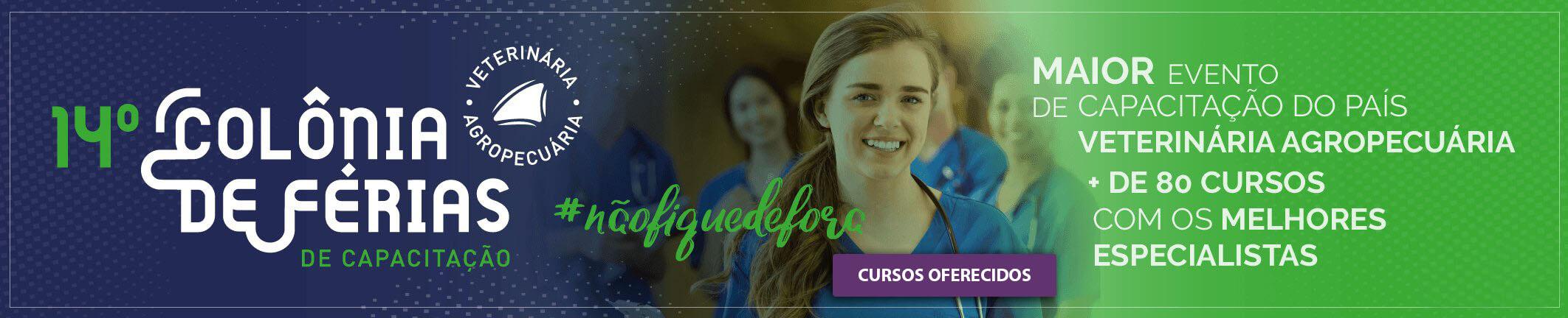 Banner Colônia de Férias de Capacitação 2018/2019