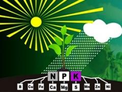 Curso de Nutrição Mineral e Adubação de Plantios Florestais