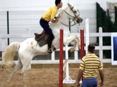 Curso de Preparação e Apresentação de Cavalos Marchadores para Pista