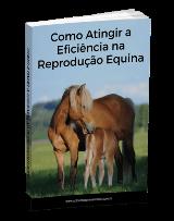 Como Atingir a Eficiência na Reprodução Equina