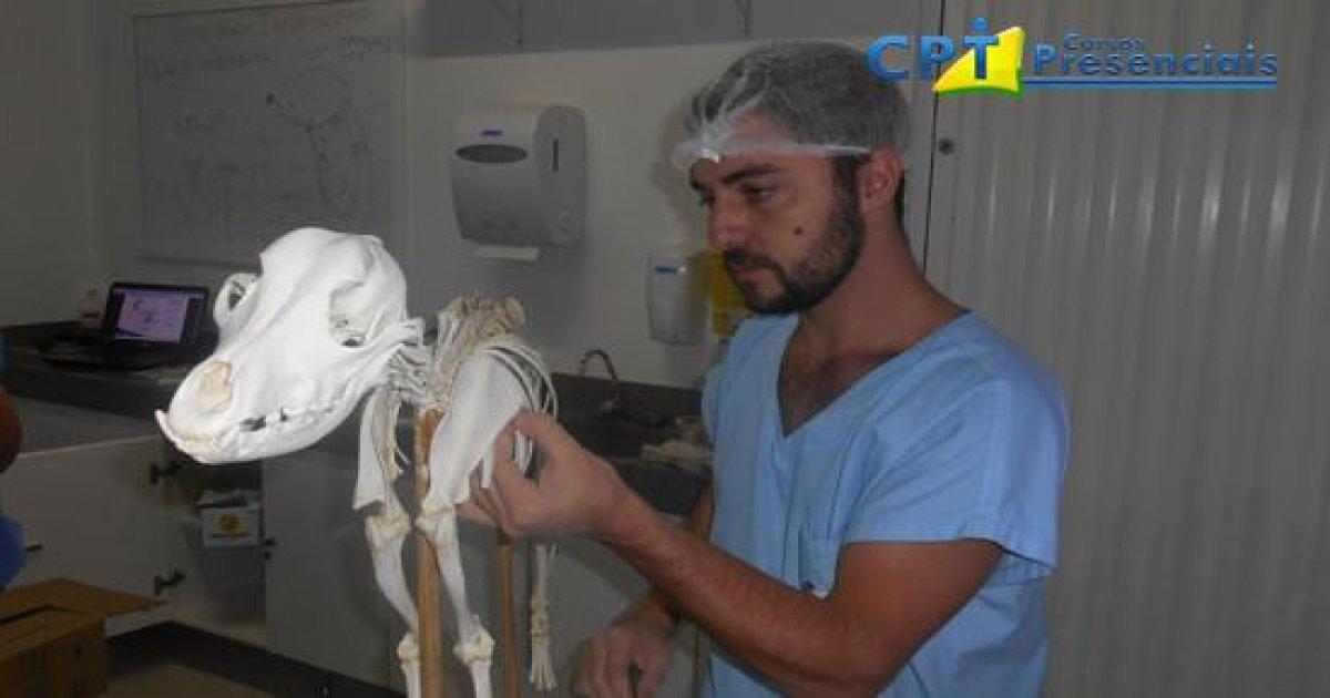 05º Curso de Anestesias Locorregional em Pequenos Animais 18-03-17
