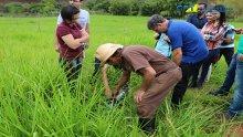 05º Curso de Projetos de Sistemas de Irrigação 19-10-2017