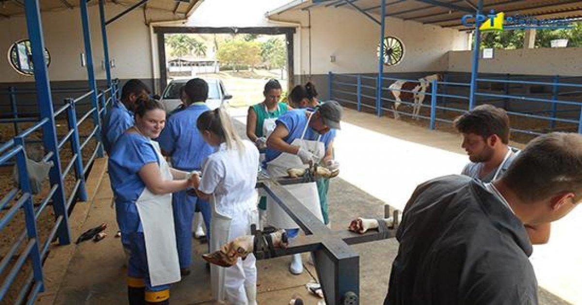 107º Curso de Cirurgias em Bovinos a Campo 20-10-17