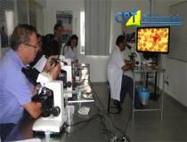10º Curso de Realização e Interpretação dos Principais Exames Laboratoriais em Pequenos Animais - 26/01/2014