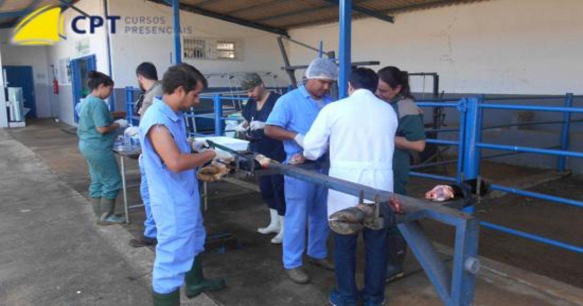 116º Curso de Cirurgias em Bovinos a Campo 06-07-18
