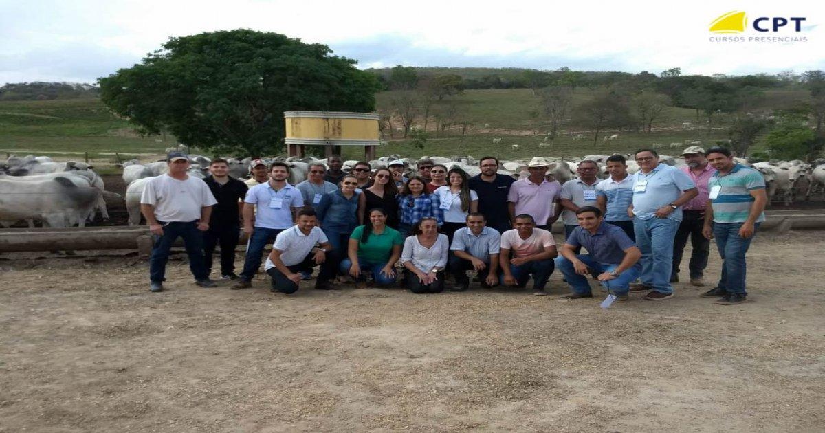 16º Curso de Administração Técnica e Econômica da Bovinocultura de Corte (Local Belo Horizonte) 27-09-2018