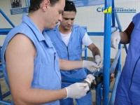 17ºCurso de Cirurgias em Bovinos a Campo 03/02/2011