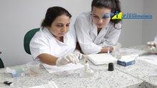 17º Curso de Realização e Interpretação dos Principais Exames Laboratoriais em Pequenos Animais 20-11-15