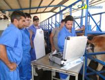 29º - Curso de Inseminação Artificial em Bovinos.  -  20-10-2012