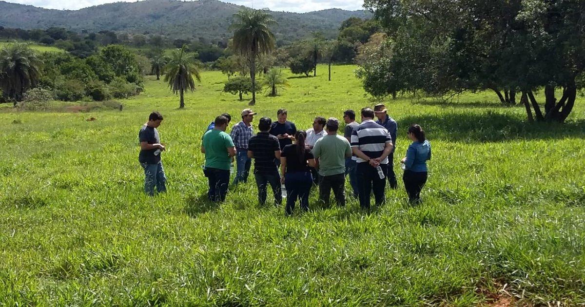 38º Curso de Manejo Nutricional de Gado de Corte - Alimentos e Alimentação (Local Belo Horizonte) 28-04-19