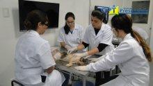 3º Curso de Medicina Felina 02-07-15
