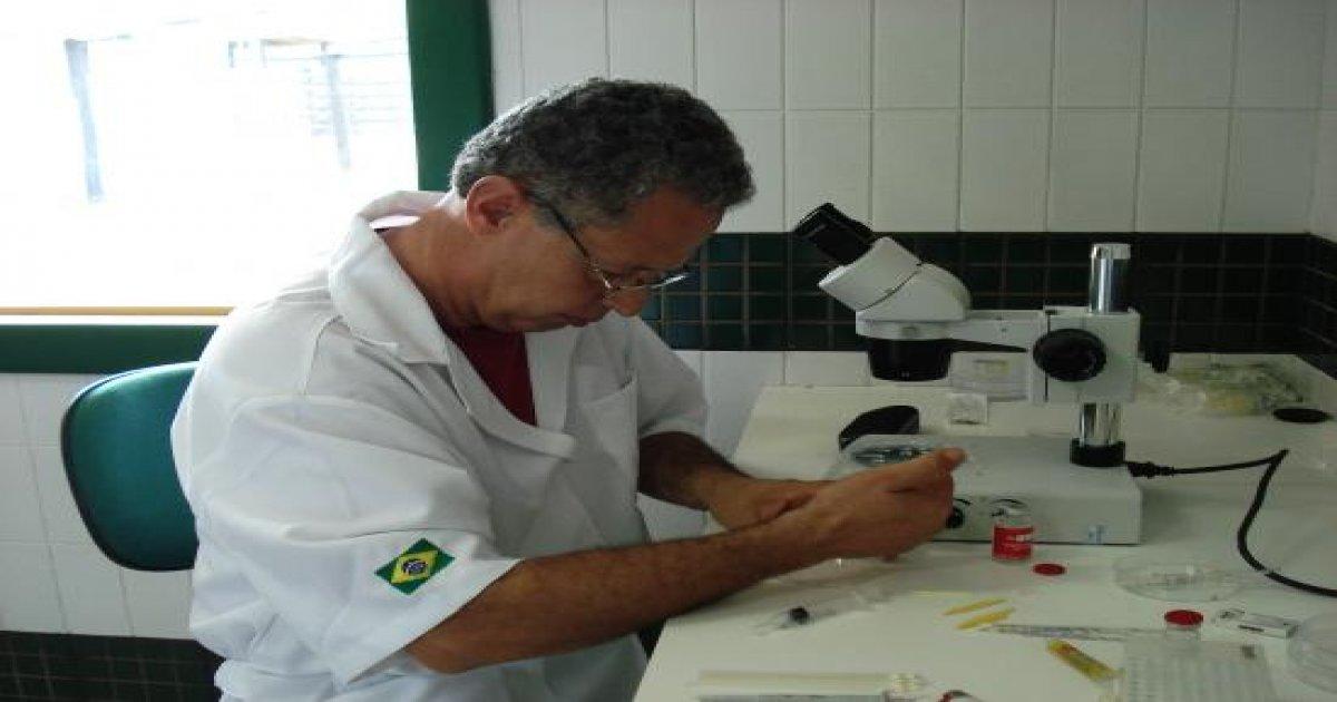 3º Curso de Transferência de Embriões em Bovinos - 09/02/2009
