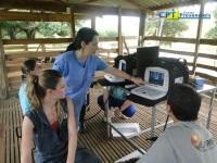 4º Curso de Ultrassonografia em Ovinos 21-01-2012