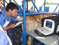 44º - Curso de Aspiração Folicular (OPU) para FIV em Bovinos -  07-10-2012