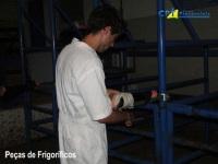 4º Curso de Tratamento de Lesões e Cirurgias do Sistema Locomotor de Bovinos 17-03-2012