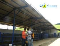 5° Curso de Integração Lavoura-Pecuária-Floresta (Sistema Barreirão) 19-01-2013