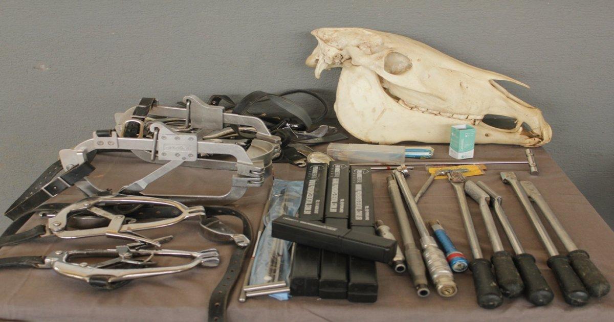 60º Curso de Odontologia Equina 21-11-19