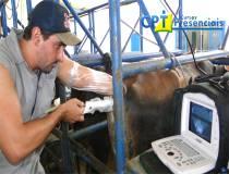 63º Cursos de Ultrassonografia e Aspiração Folicular para FIV em Bovinos 14/03/2014