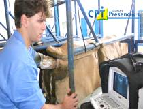 64º Cursos de Ultrassonografia e Aspiração Folicular para FIV em Bovinos 19-04-2014