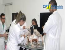 7º Curso de Inseminação Artificial e Exame Andrológico e Congelamento de Sêmen de Cães 09-03-2015