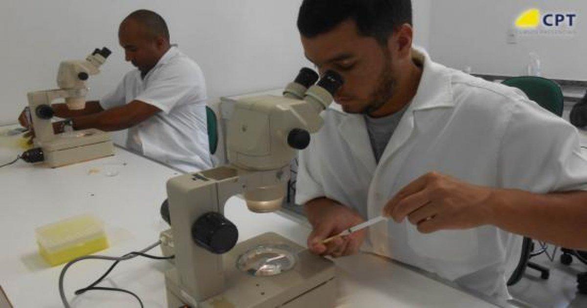 90º Curso de Transferência de Embriões em Bovinos 15-09-18