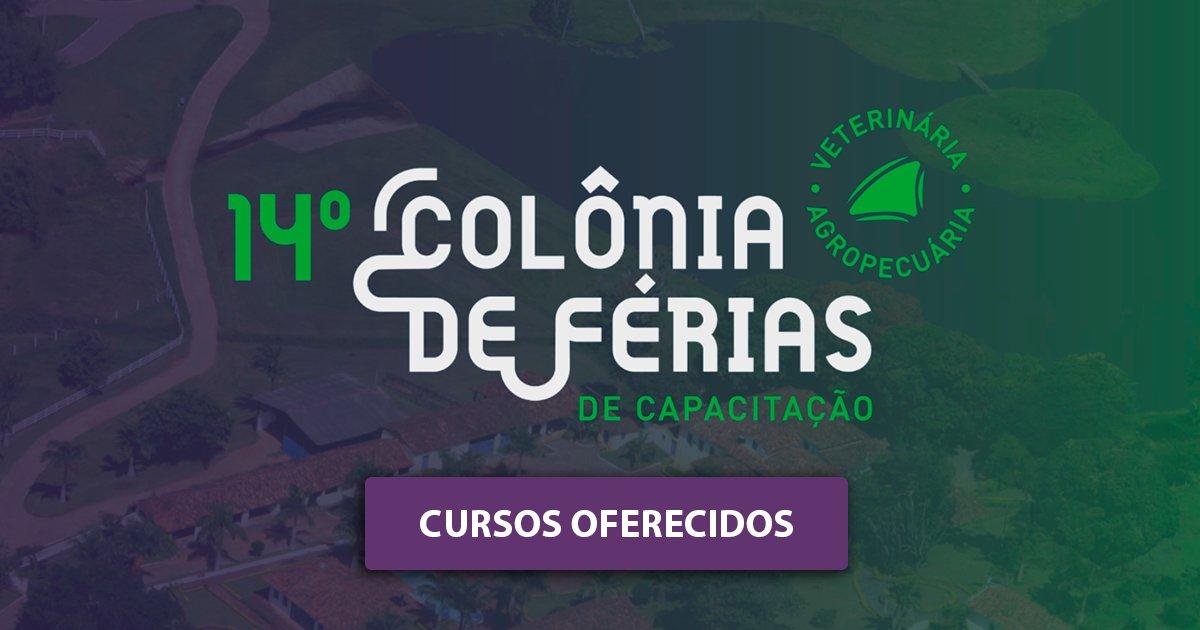 Colônia de Férias 2018-2019