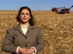 Cultura do milho nos Estados Unidos