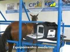 Cursos Presenciais em Equinos - CPT Cursos Presenciais - Viçosa -MG