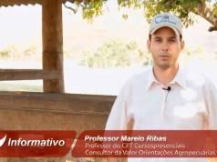Estrutura de Suplementação de Sal Mineral e Suplementos para a Seca