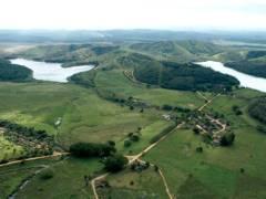 Fazenda Brasília e o Gir Leitero